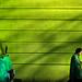 old green by Zlatko Vickovic