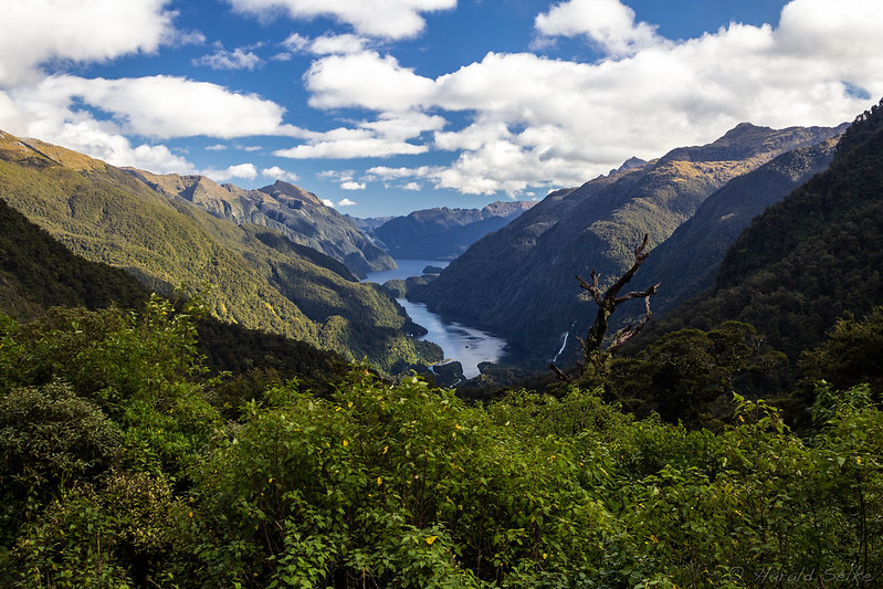 View from Wilmot Pass into Doubtful Sound
