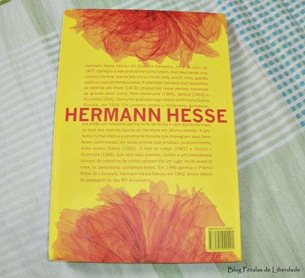 Resenha, livro, Demian, Hermann Hesse, trecho, Record, capa, opinião, sinopse
