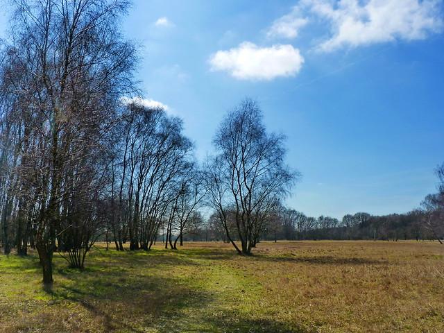 Naturschutzgebiet Boberger Niederung