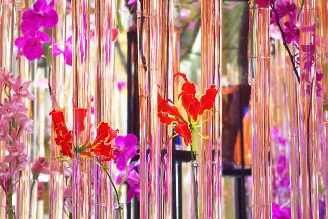 toomilog-FlowerArtExhibition2016008