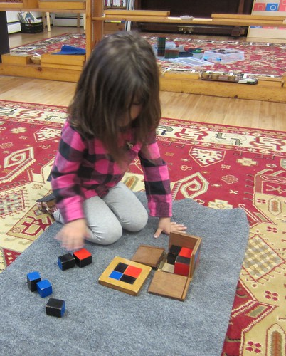 tri-nomial cube