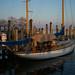 harbor by appleisapple