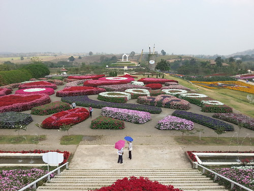 park flowers thailand flora isaan florapark wangnamkhiao