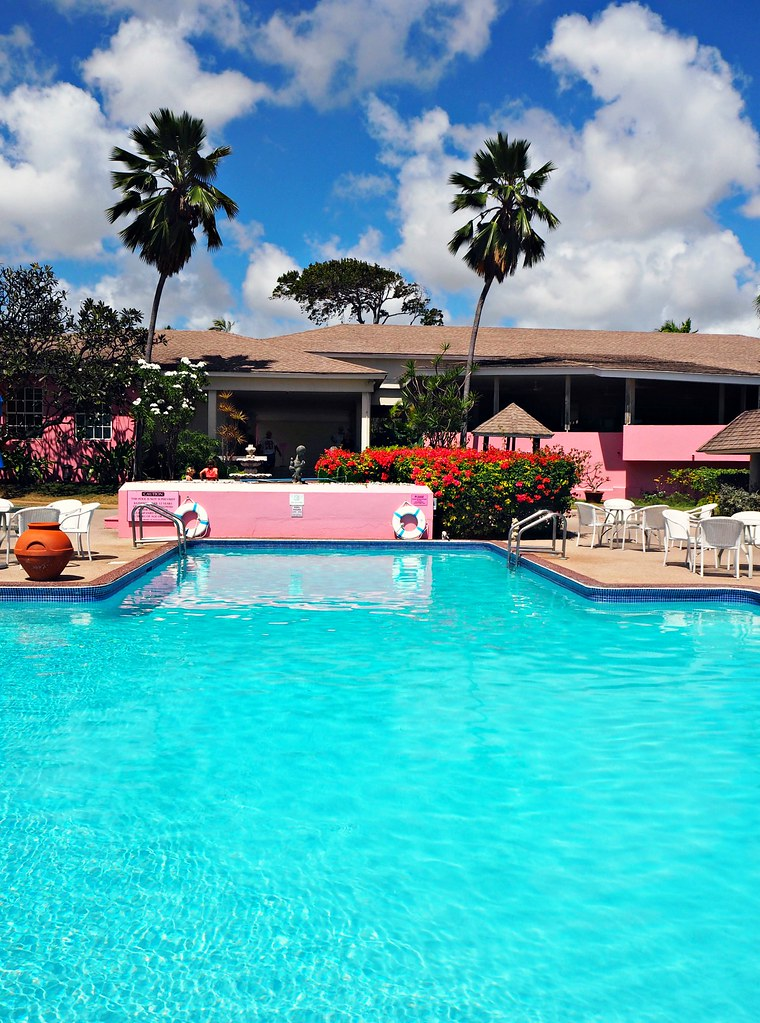 The Little Magpie Southern Palms Barbados Review 28 (2)
