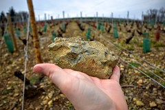 Mont Brouilly Soil