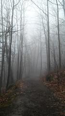 Petite promenade dans les nuages - Photo 2