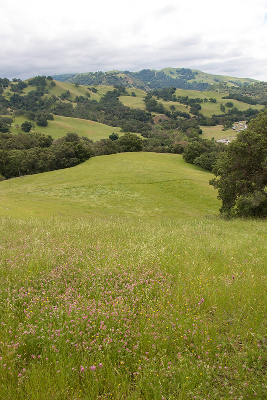 04.24. Sunol Wilderness