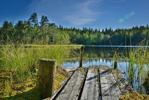 lake reflection nature water skyline forest finland landscape pond scenery view outdoor serene