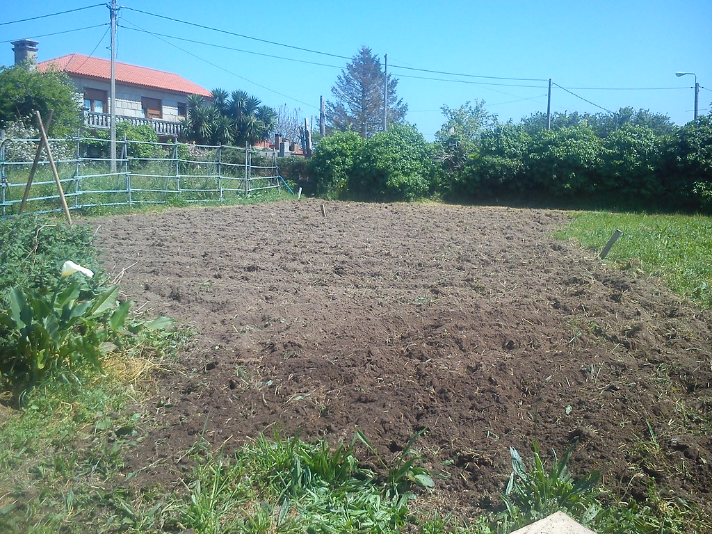 Arreglo de jardines top imagen with arreglo de jardines - Arreglo de jardines ...