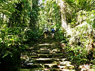 Old steps - Trekking to the Lost city
