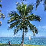 Palm Tree Point, Port Douglas. I'm a big fan of the well-timed appearance of a sailboat. If you grab just the right shady spot of choice at Rex Smeal Park, you get to watch them here off the Queensland coast all day long. Australia #lazysunday