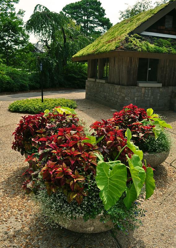 Circle Garden  (1)