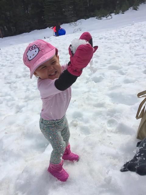 Snow Play Yosemite