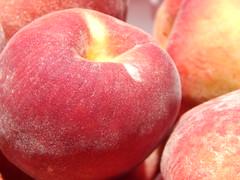 starr-140417-0253-Prunus_persica_var_persica-Florida_Prince_fruit-Hawea_Pl_Olinda-Maui