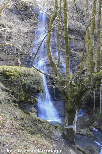 Parque Natural de Gorbeia  #DePaseoConLarri #Flickr -3087