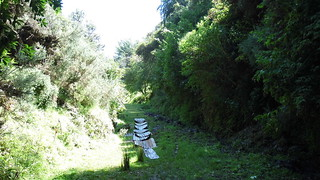 Tunnel at Wingatui 28 Feb 2016 (2)