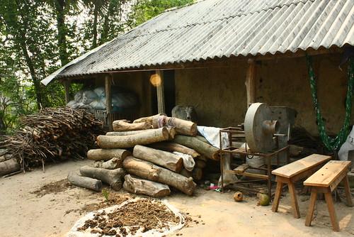 Dairying in Odisha