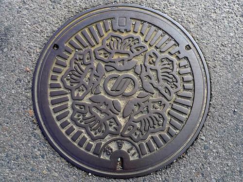 Kawabe Gifu, manhole cover (岐阜県川辺町のマンホール)