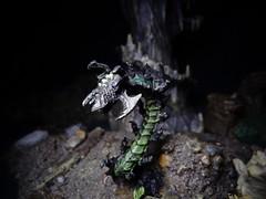 Thorn Crawler