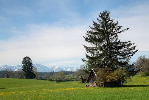 Frühlingsausflug in die Alpen