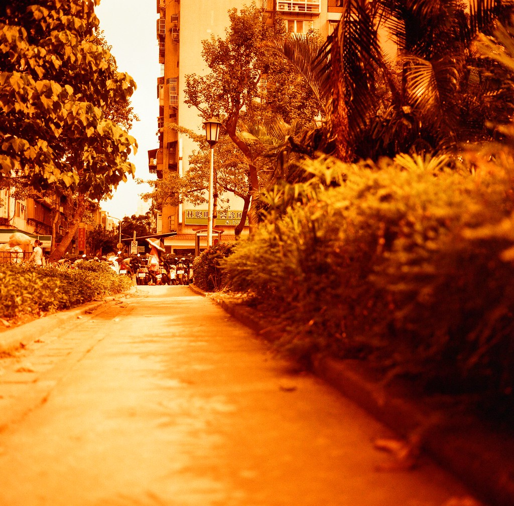 Taipei Street / Lomography Redscale / Minolta AUTOCORD AUTOCORD 這台有點可惜,後來工作有點忙,笨笨重重的這台就很少帶出門了,但是 75mm 的焦段再配上大光圈,其實我有點念念不忘!  Minolta AUTOCORD Lomography Redscale XR 50-200 120mm 4046-0003 2015/11/18 Photo by Toomore