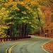 Autumn road by NataThe3
