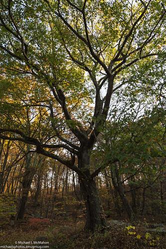 unitedstates pennsylvania archbald pennsylvaniastateparks archbaldpotholestatepark