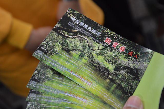 四草綠色隧道04
