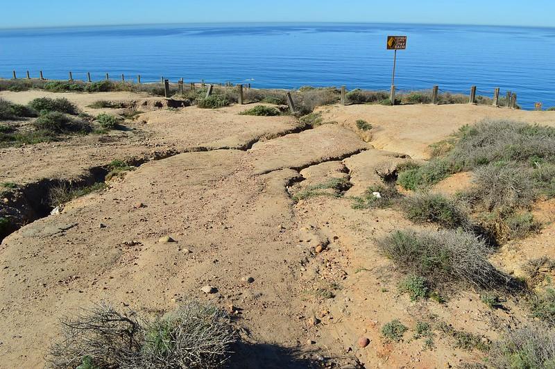 La Jolla Cliffs by Natalie Popescu