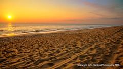 A Well Traveled Beach