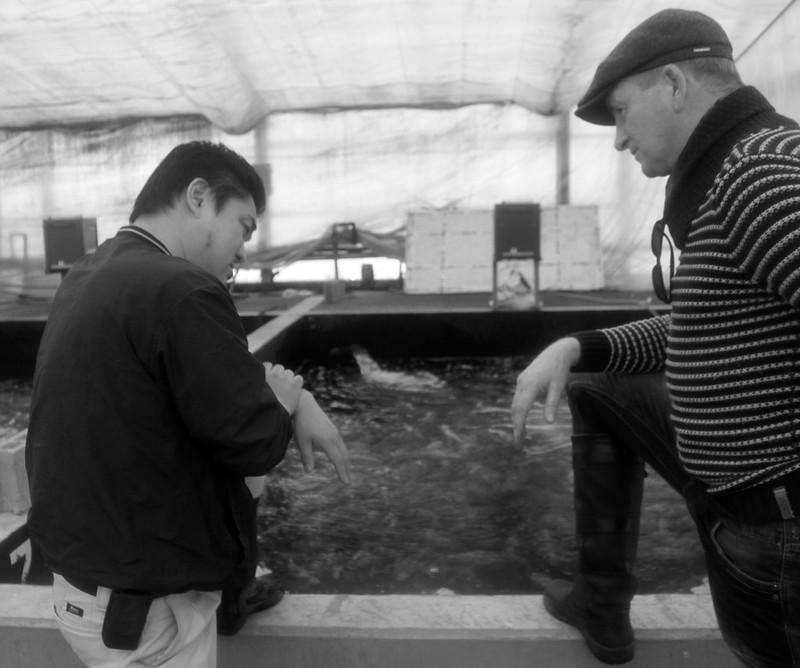 Leo de Bruin van Deshimakoi in gesprek met Shigeru Mano van de Dainichi Koi farm in februari 2016