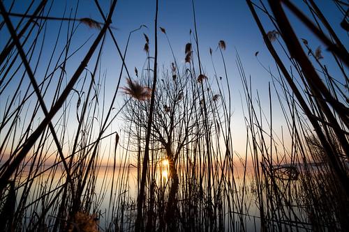 Intrigo al tramonto