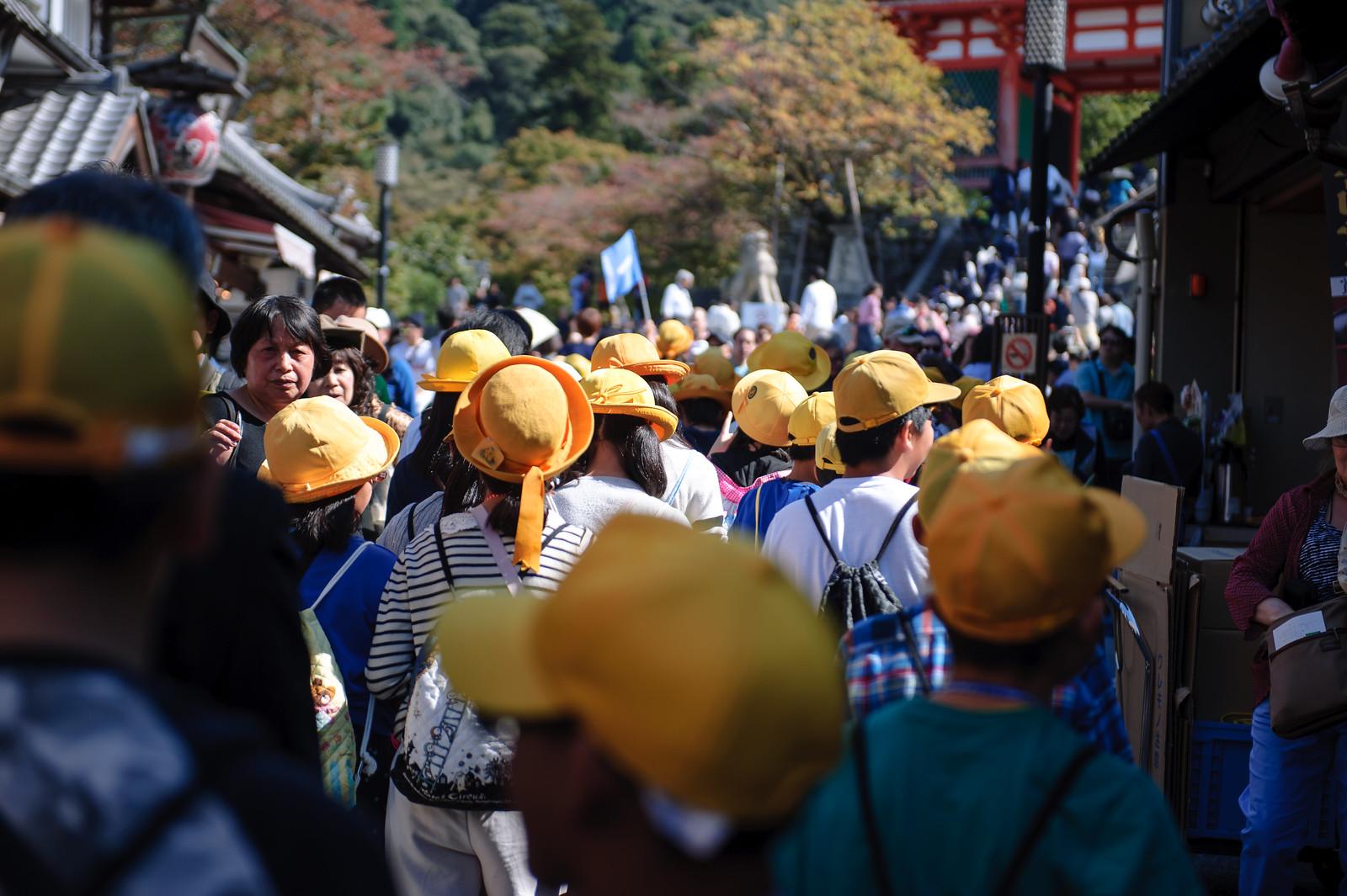 2015VQ@Kyoto-417