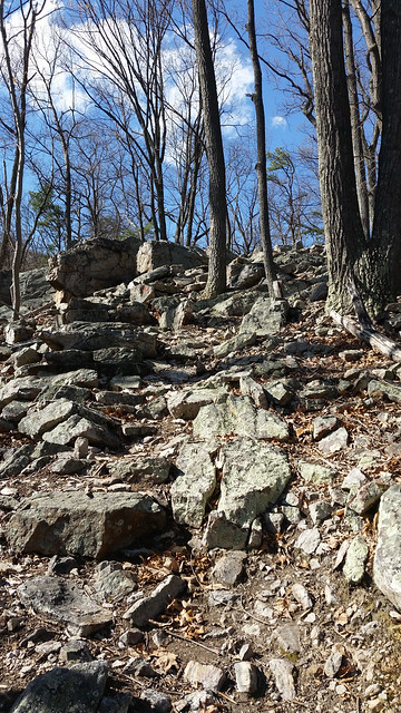 20160402_Cacapon_State_Park_042