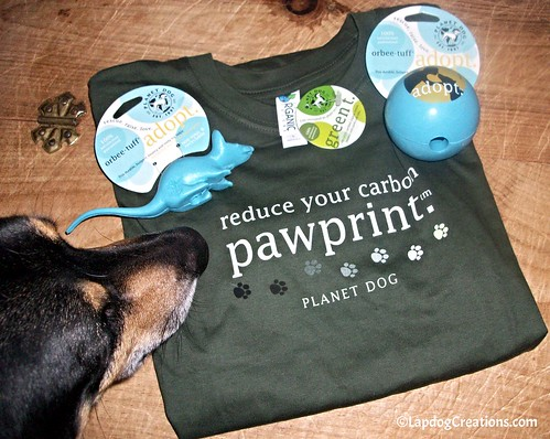 Teutul leanring to reduce his carbon pawprint #EarthDay #PlanetDog #LapdogCreations @LapdogCreations