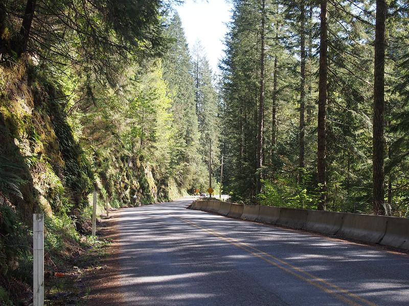 Carbon River Road