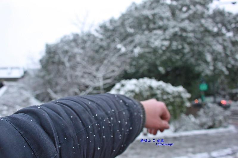 2016-台北陽明山-瑞雪-難得一見的雪白山景-17度C隨拍 (45)