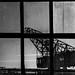Window by inesdobras