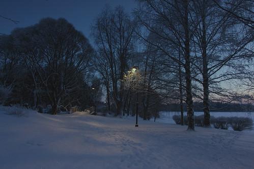 park suomi finland tampere pirkanmaa hatanpääarboretum