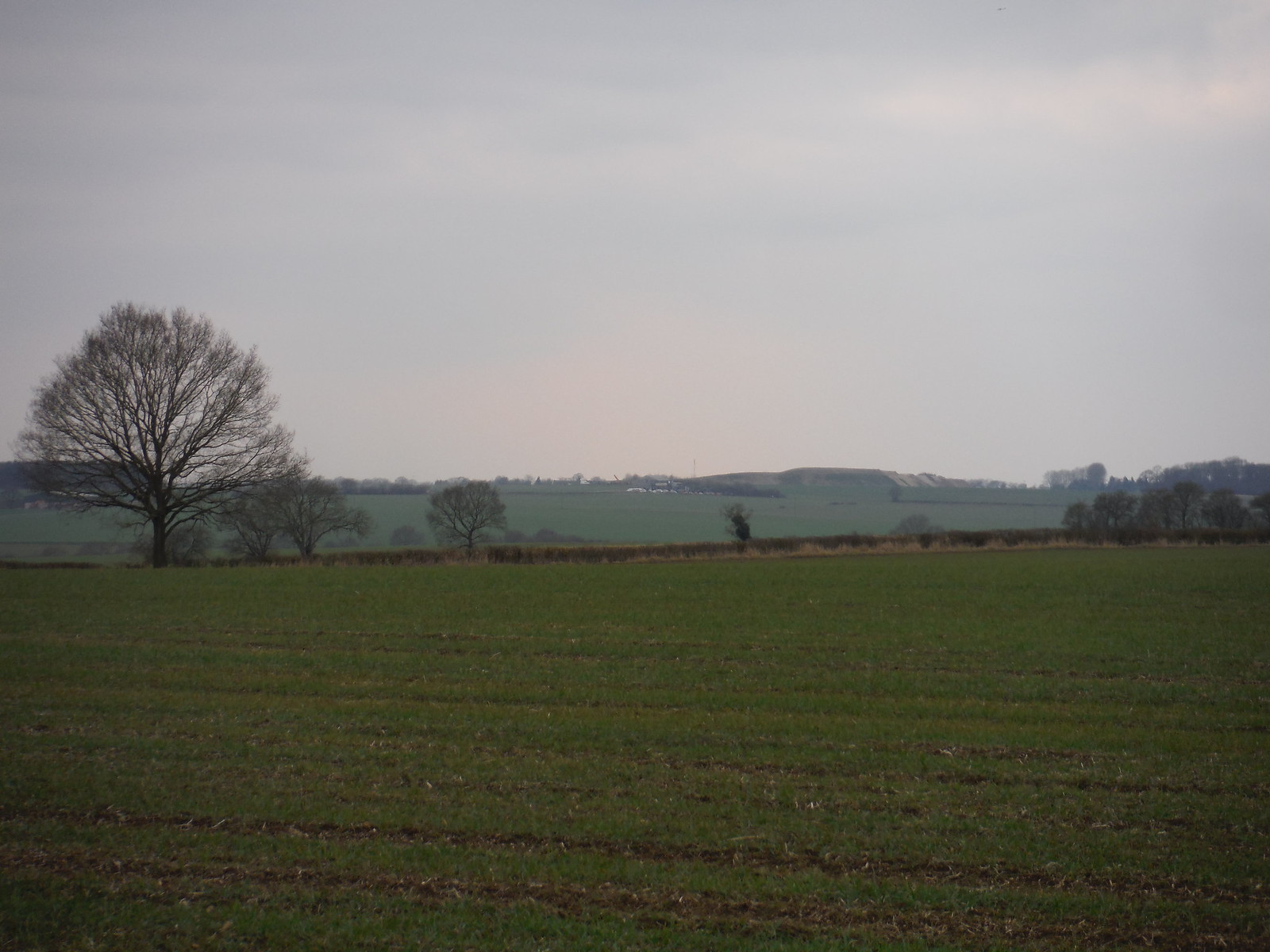 Landing Strip near Nuthampstead, from Langley, Upper Green SWC Walk 116 Wendens Ambo [Audley End station] Circular (Extension)