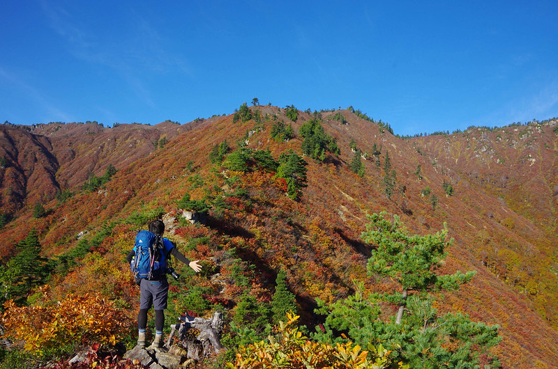 20141018-平ヶ岳saku-0028.jpg
