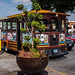 2016 - Mexico - Tlaxcala - City Tour Bus por Ted's photos - Returns mid July