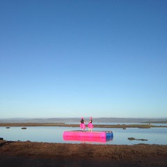Waiting performers. #ducklake #nofilter #birdsanctuary #moultinglagoon #tasmania #banduckhunting #openseason