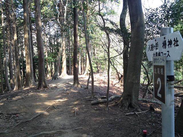 入道ヶ岳 北尾根 通報ポイント2