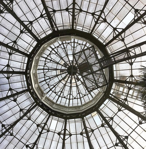 Looking up inside Allan Gardens' Palm House.  #igersToronto