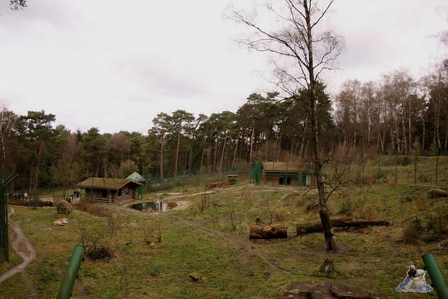 Wildpark Lüneburger Heide 31.03.2016  0098