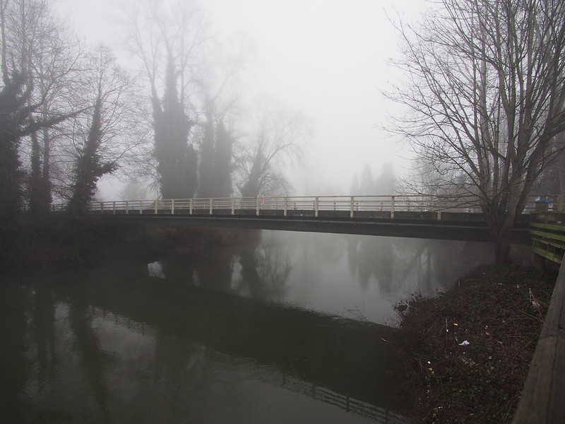 Allentown Bridge: This fog continuously deposits ice on most surfaces, which has made the mornings this season some of the worst times for riding I've ever experienced.