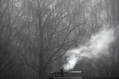 Rauch im Nebel (2)