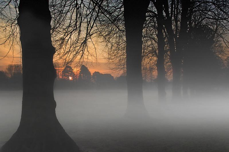 Pontcanna Dawn